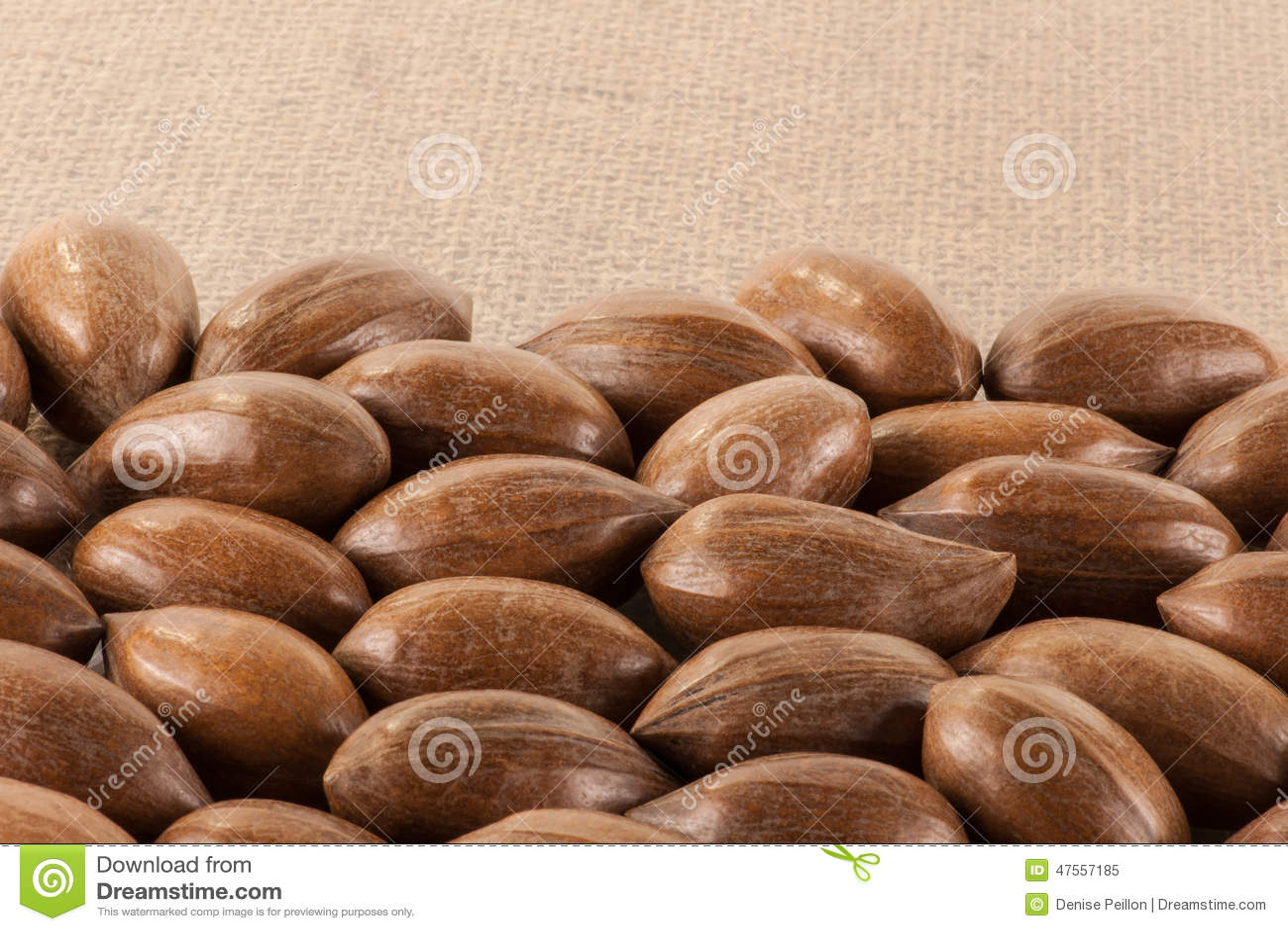Close up of pecan nuts