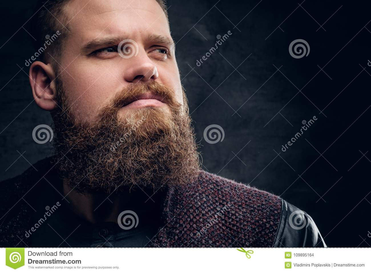 Close up portrait of brutal bearded male.