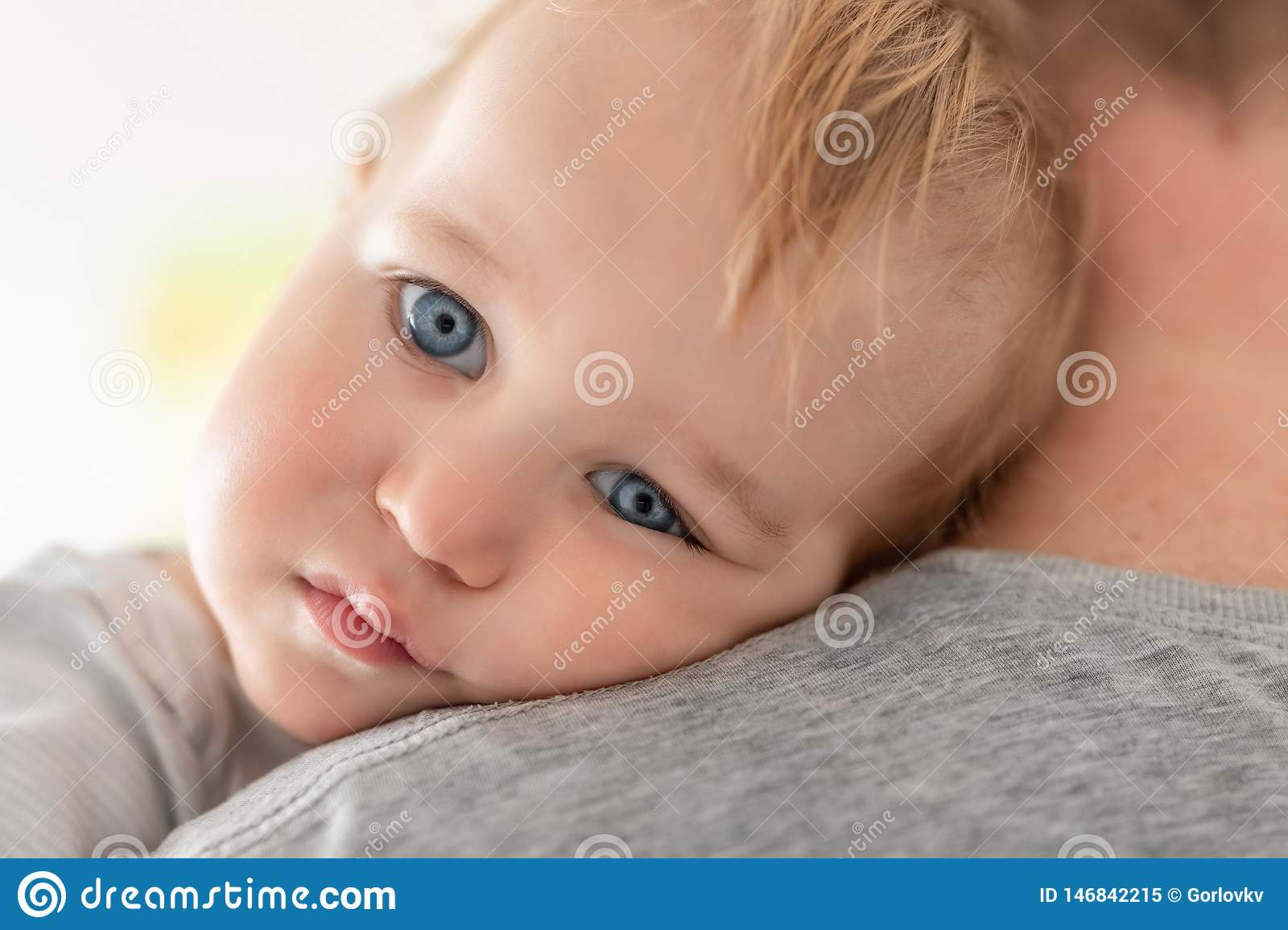 Close-up portrait of cute adorable blond caucasian toddler boy on fathers shoulder indoors. Sweet little child feeling safety on