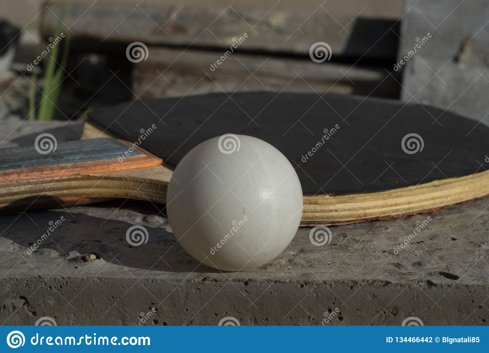 Close-up of a racket and ball for playing table tennis with a soft background