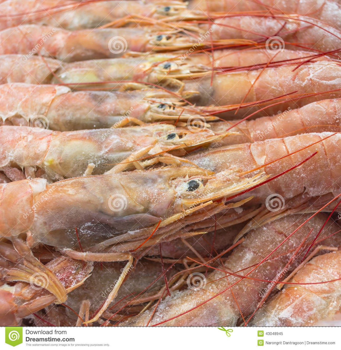 Close Up Of Raw Frozen Argentina Red Shrimps Stock Image Image Of