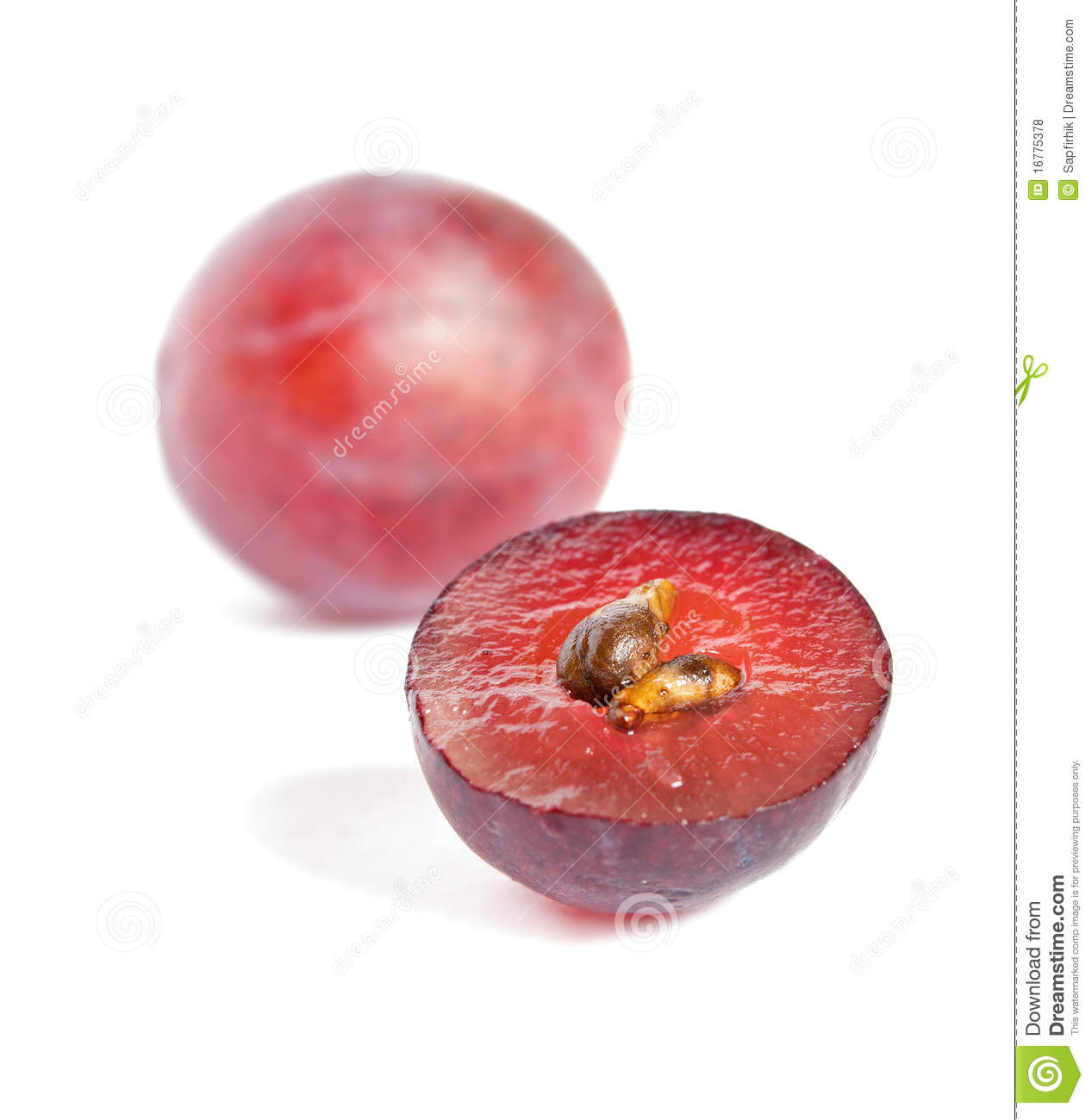 close up of a red grape stock photo image of half  food bone clip art free bone clipart cartoon