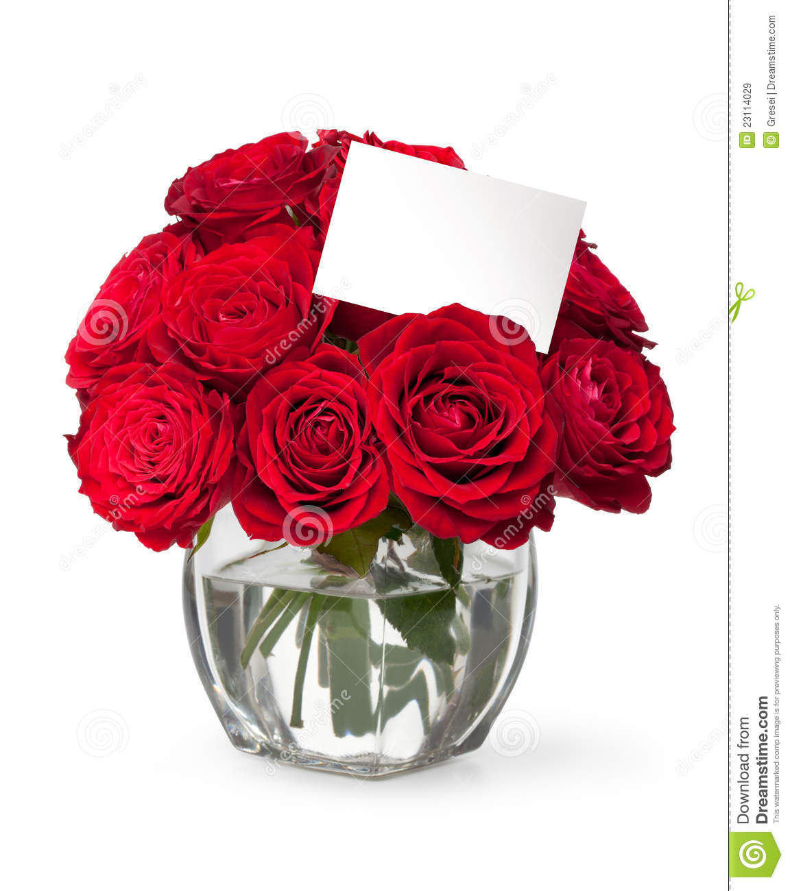 Close-up Red Rose With A Greeting Card Stock Image - Image ...