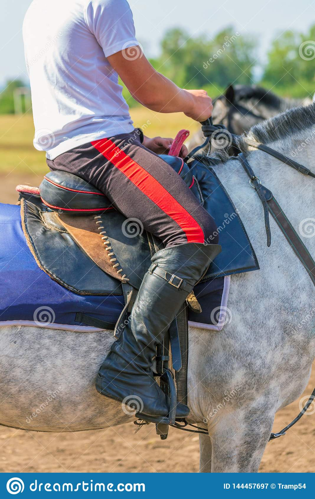760 Riding Stirrups Photos Free Royalty Free Stock Photos From Dreamstime