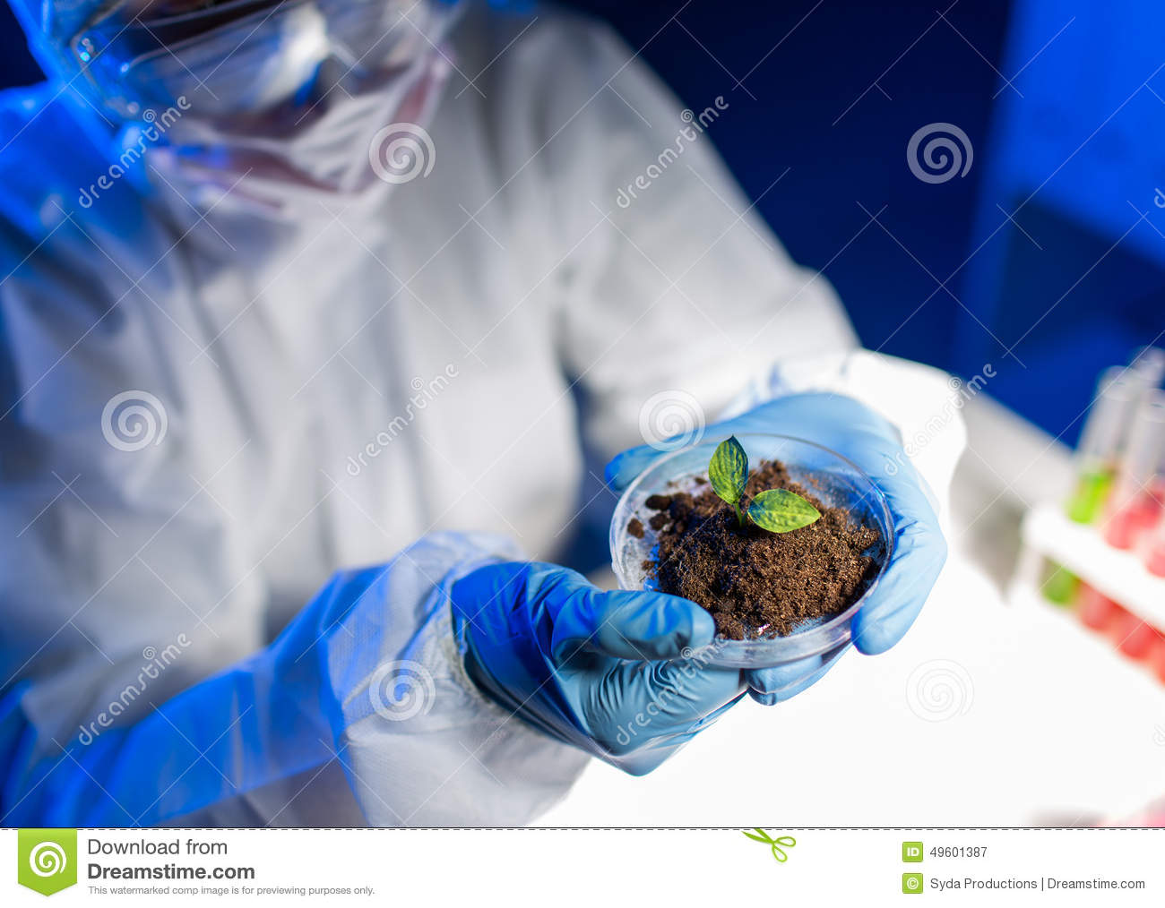 Biologist holding sprout with gloves stock image for Soil and plant lab