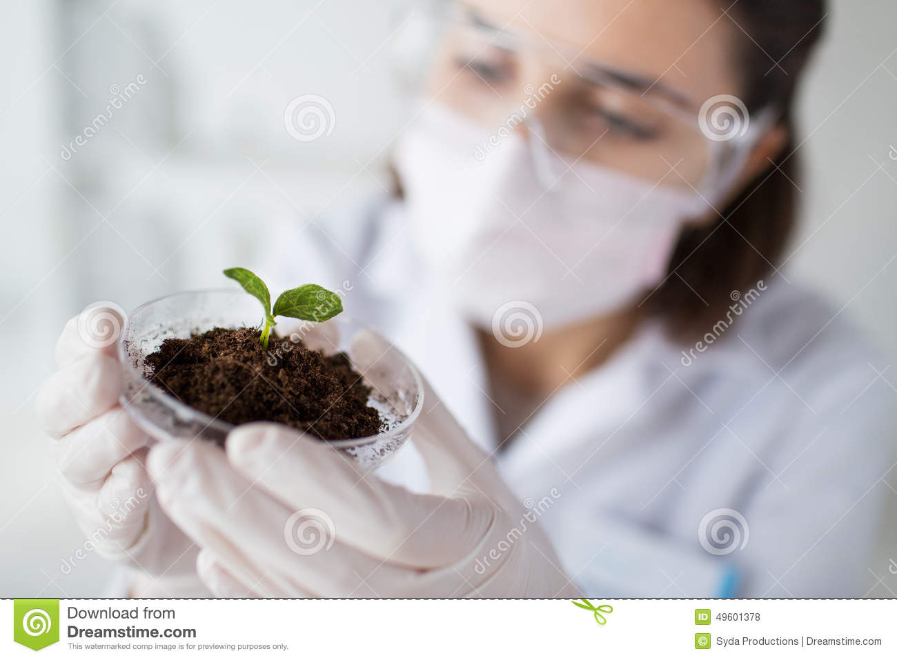 Close up of scientist with plant and soil in lab stock for Soil and plant lab