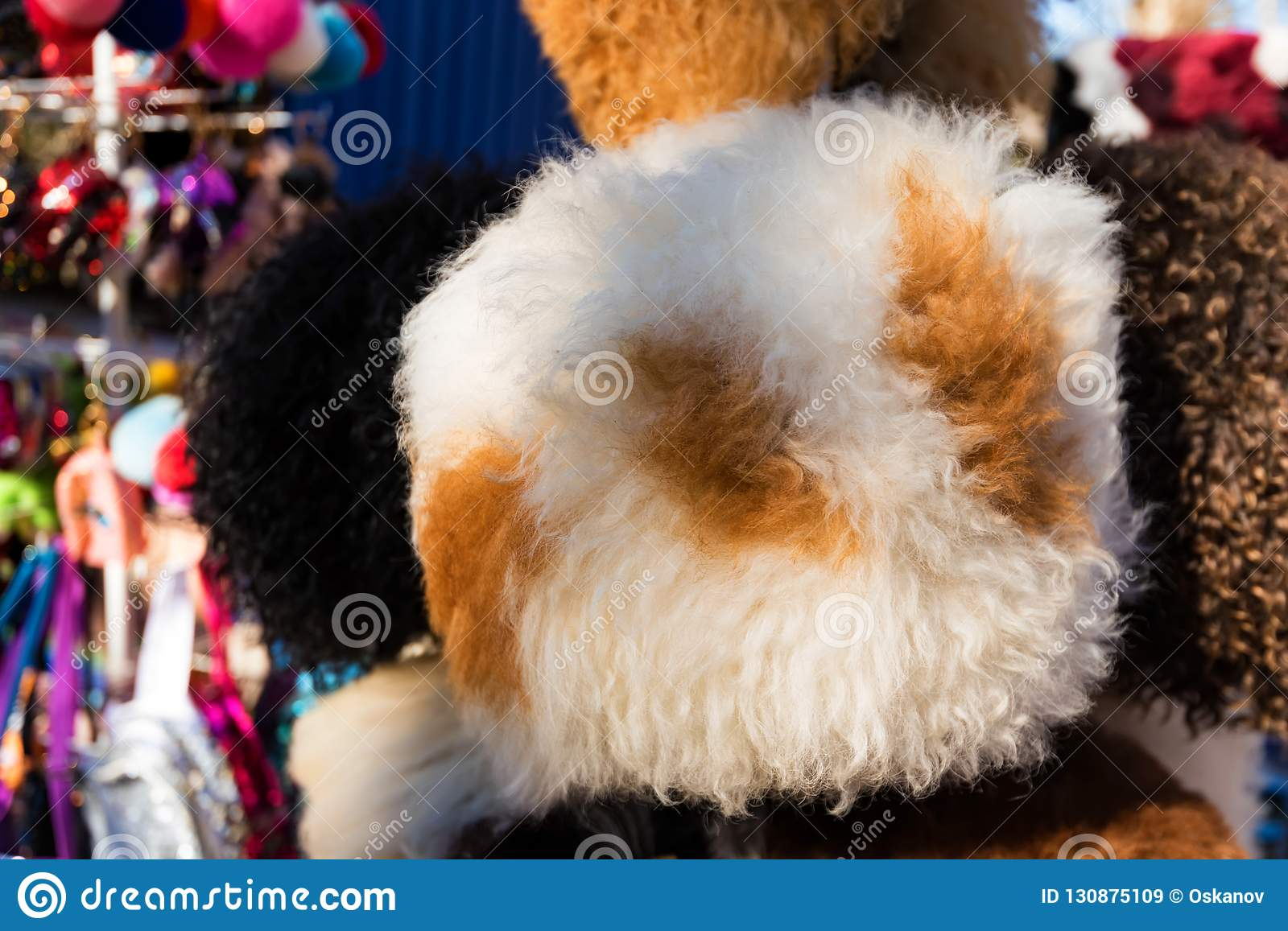 45ff9e3762f Warm Fur Hats For Sale In Outdoors Market Stock Image - Image of ...