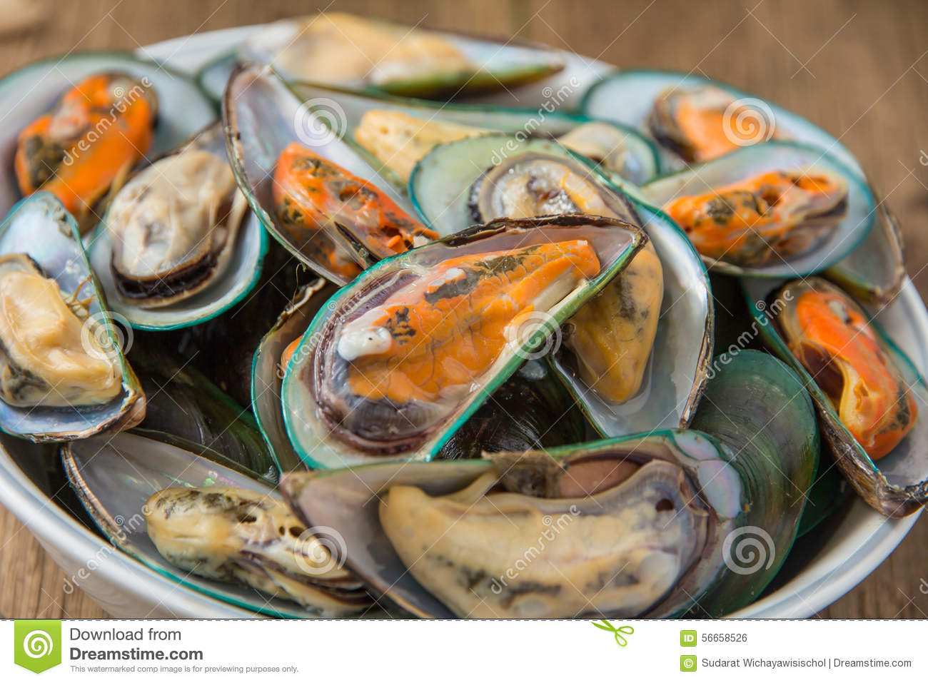 close-up-steamed-mussels-delcious-thai-mussel-56658526.jpg
