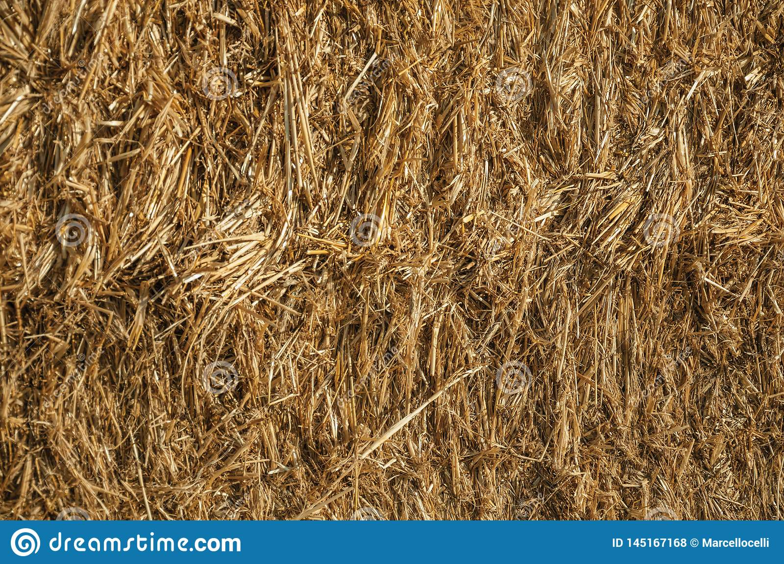 Close-up of Straw from a hay bale in a farm