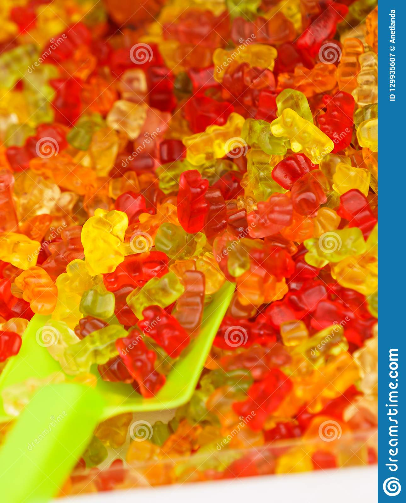 Close up of teddy bears jelly beans