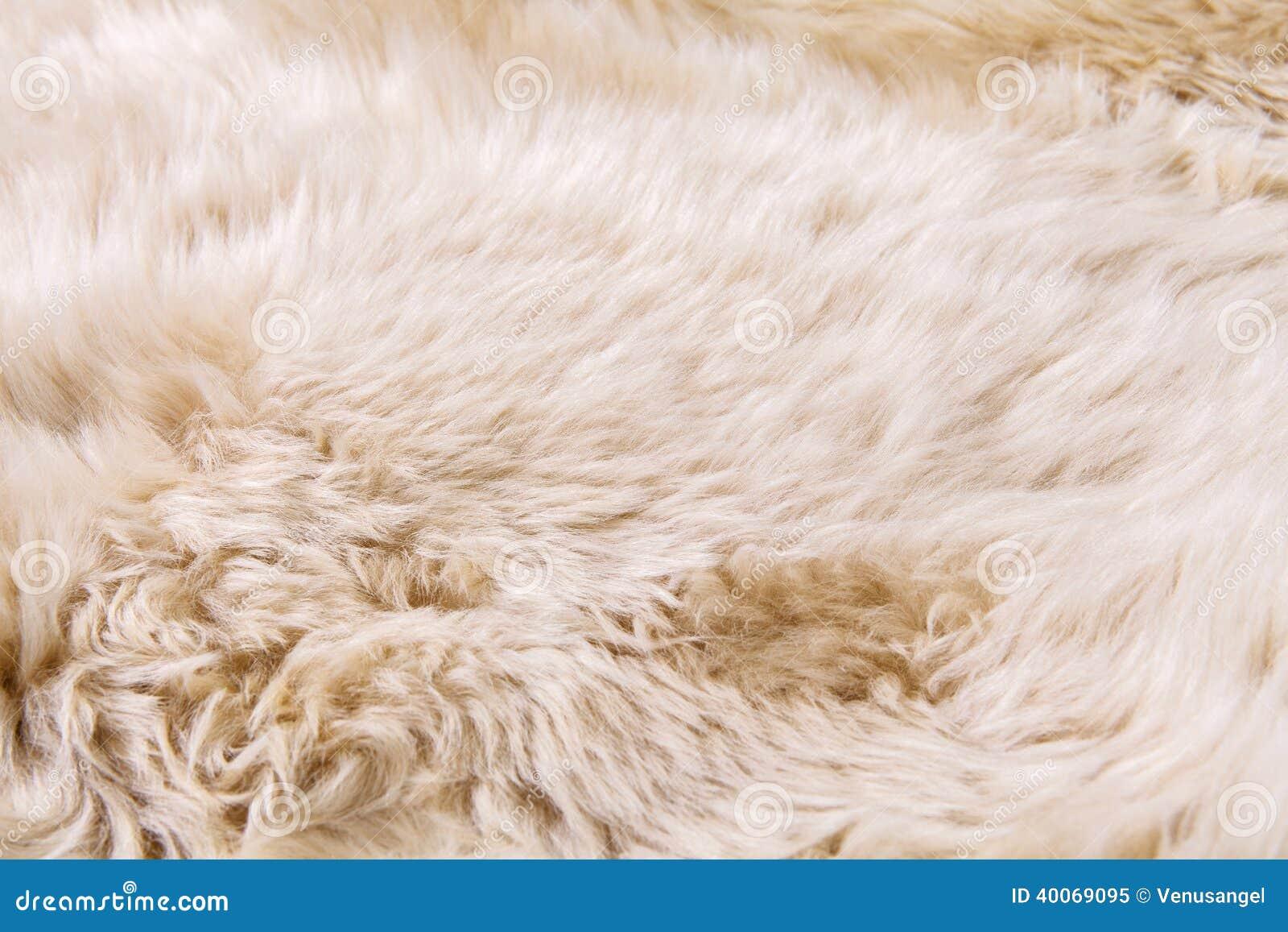 close up texture of fur carpet stock image image 40069095
