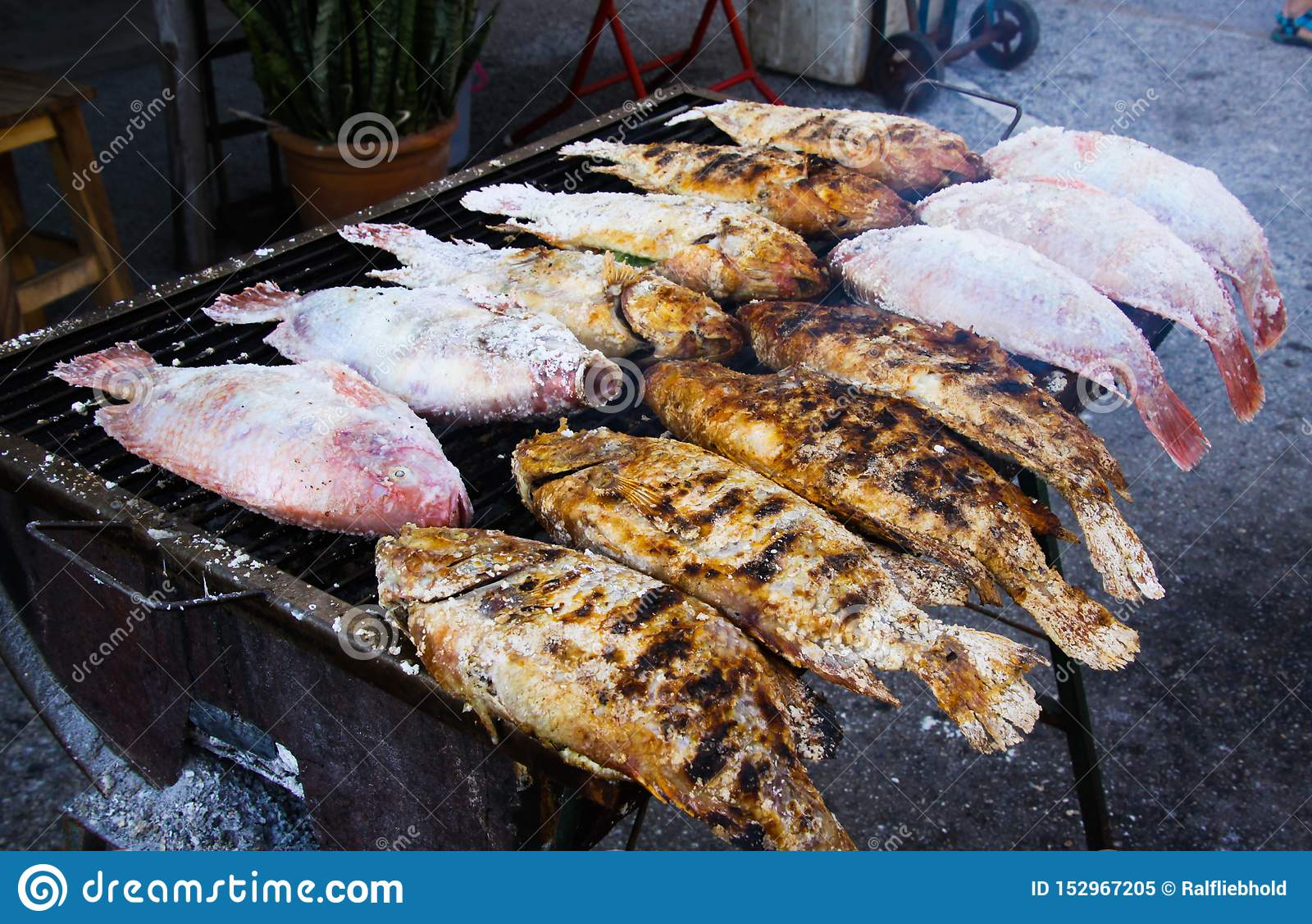 Close up of thai street food barbecue with salted fishes on charcoal grill - Bangkok, Thailand