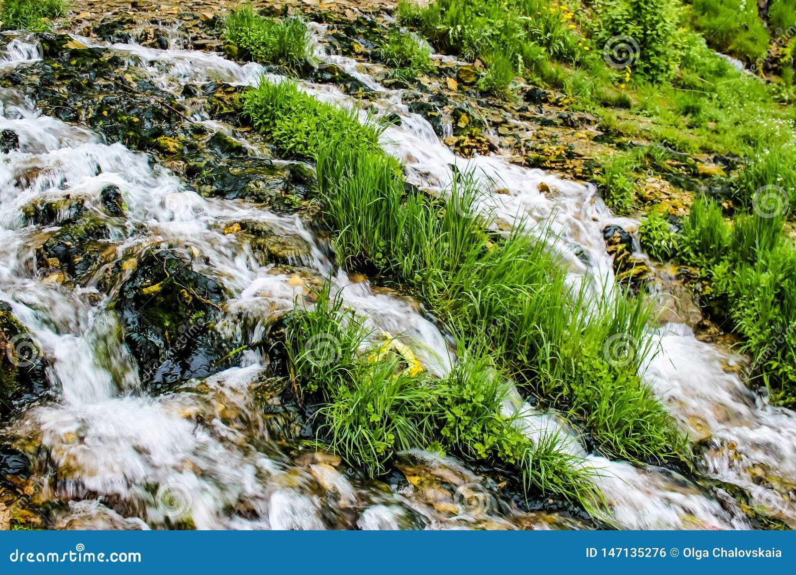 Close-up van een bergstroom met groen gras