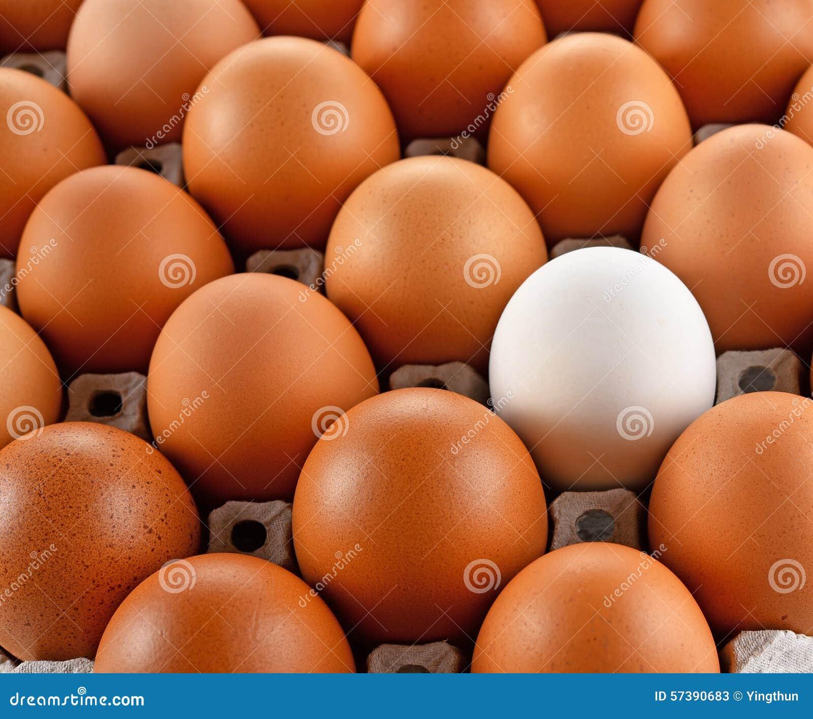 Close-up van het witte document van het eierleggenblok