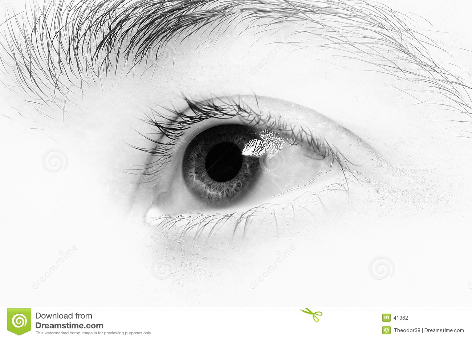 Close-up van oog-4
