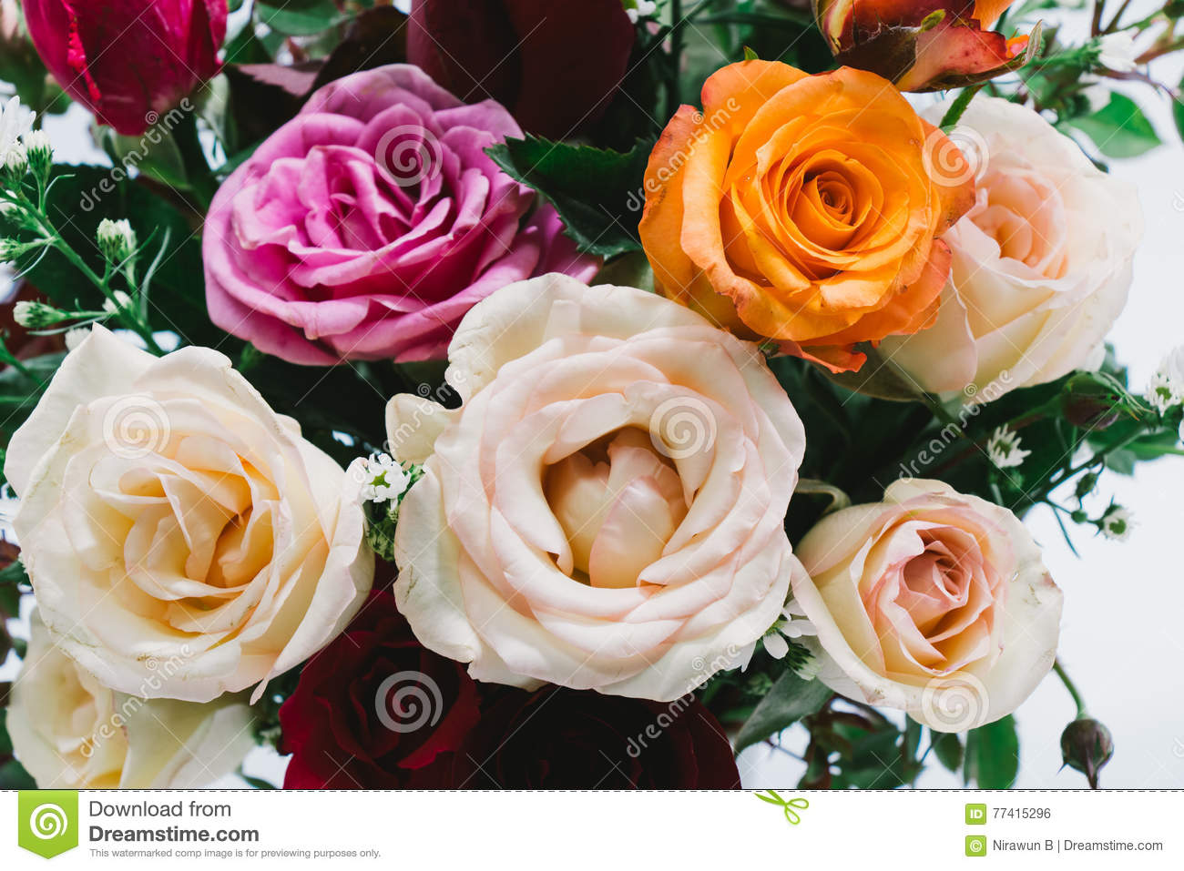 Close up vase of roses bouquet beautiful flower stock photo image download close up vase of roses bouquet beautiful flower stock photo image of blossom izmirmasajfo
