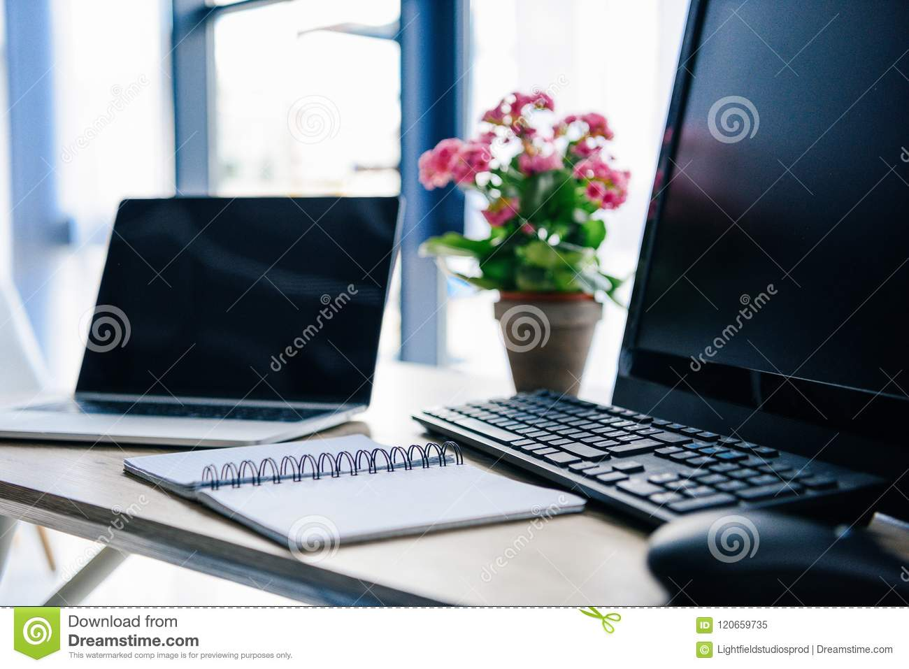 close up view of empty textbook, laptop, flowers in pot, computer, computer keyboard and computer mouse