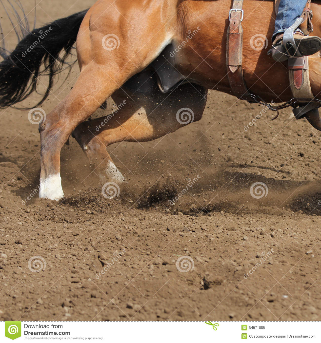 A close up view of a fast running horse and flying dirt.