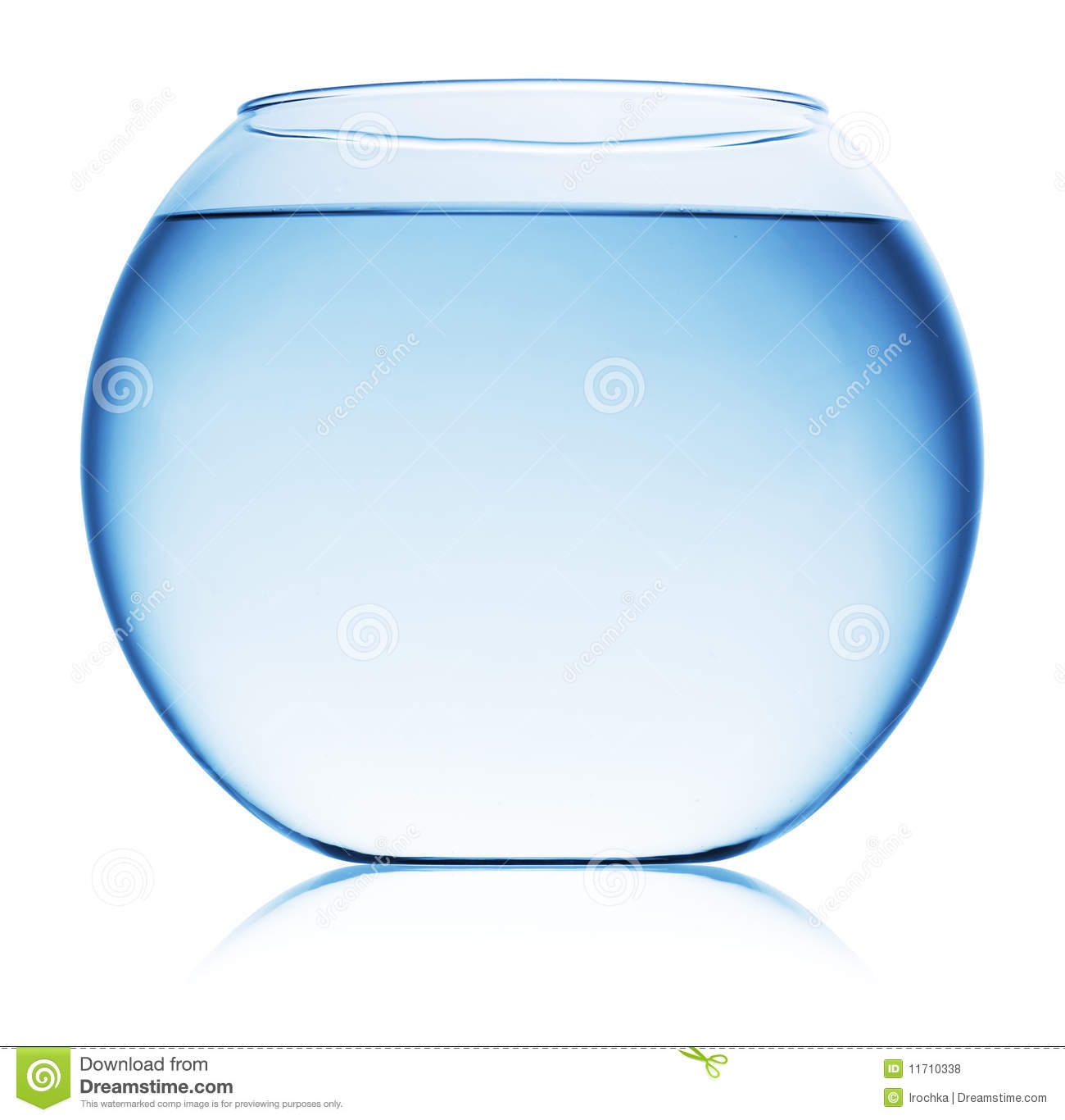 Close up view of fish bowl isolated stock photo image of for Fish bowl fish