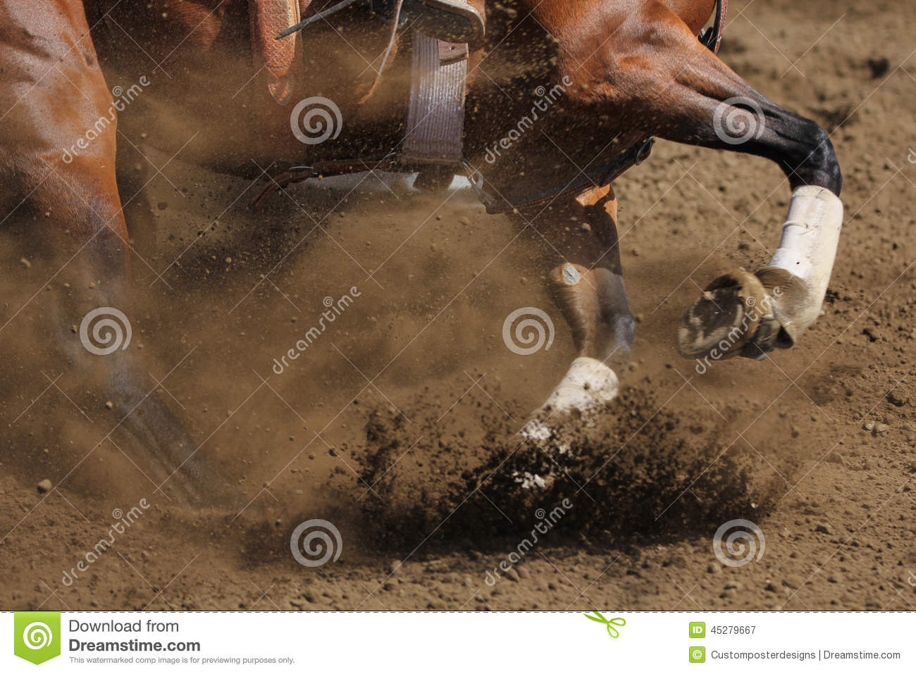 A close up view of a horse galloping.