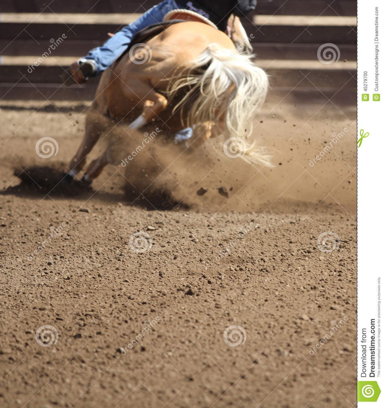 Download A Close Up View Of A Horse Galloping. Stock Photo - Image of area, brown: 45279700