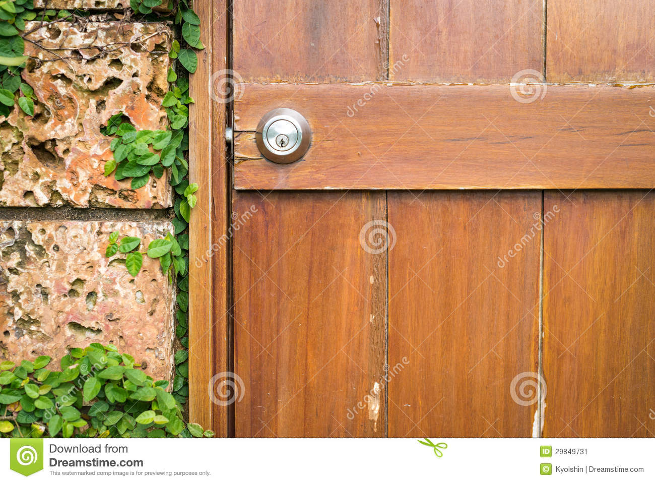 House In Details Door And Wall With Green Stock Image