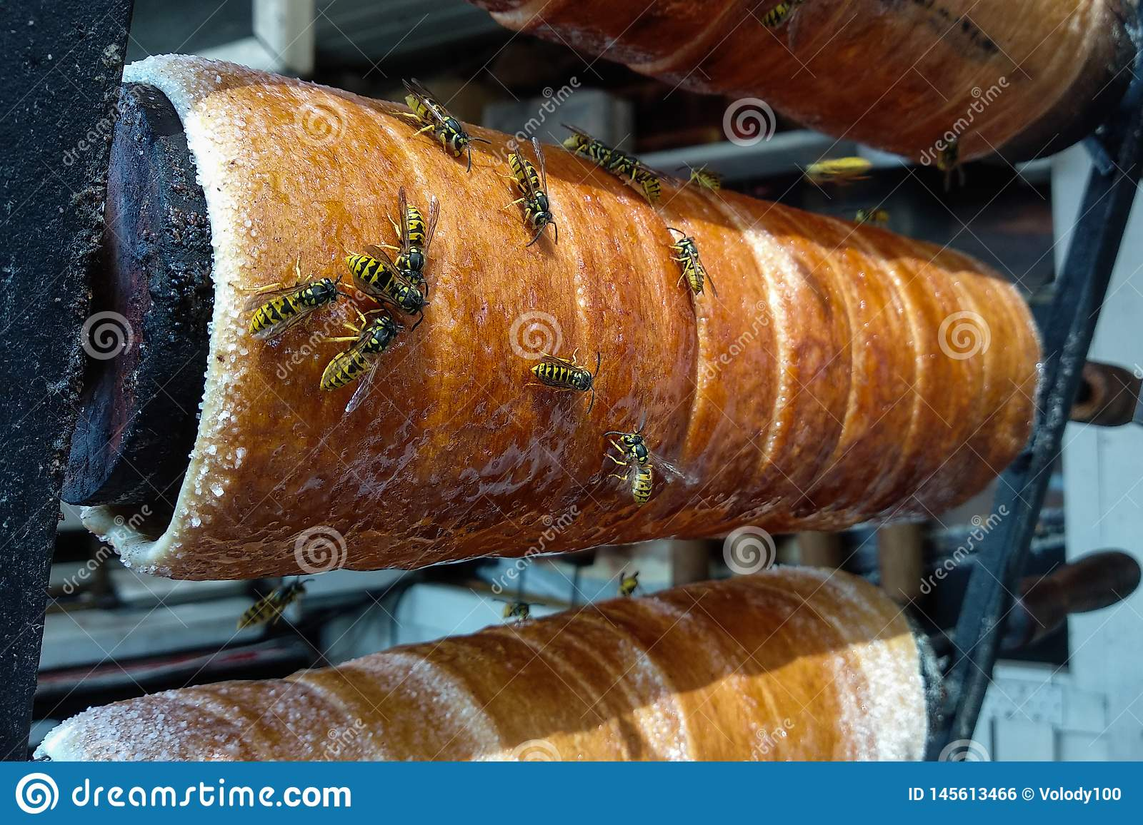 Close up view of the working bees on the honeycomb with sweet honey. Honey is beekeeping healthy produce
