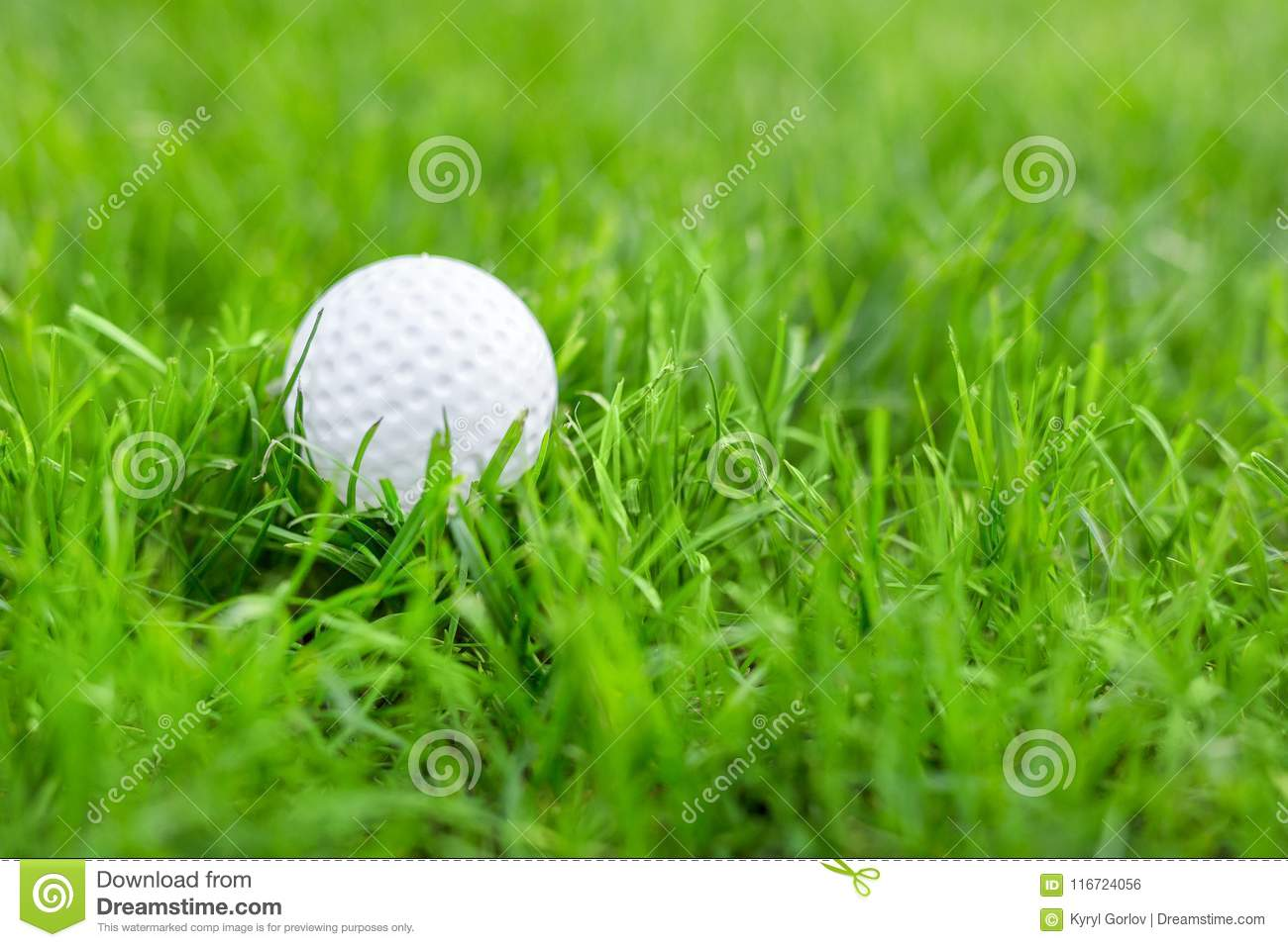 Close-up of white golf ball in green grass meadow. Details of play field. Badly prepared lawn for professional game