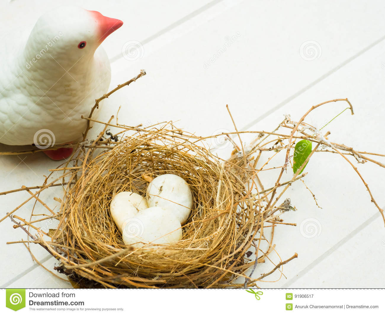 singles in birdsnest Birdsnest's best free dating site 100% free online dating for birdsnest singles at mingle2com our free personal ads are full of single women and men in birdsnest looking for serious relationships, a little online flirtation, or new friends to go out with.