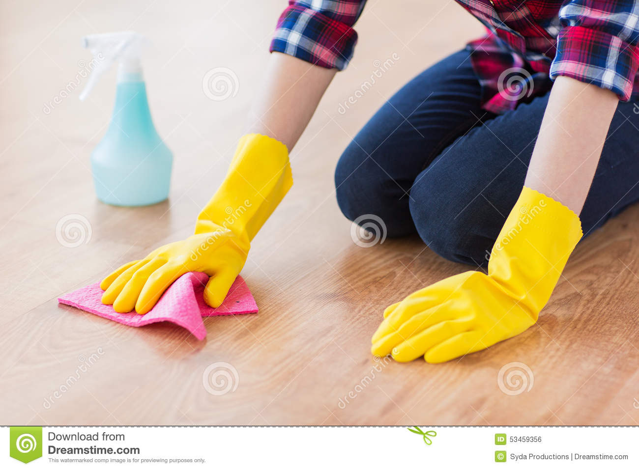 economics assignment on floor cleaning detergents The international organisation for economic co-operation and development does not suspect citric acid of being mutagenic based on both in vitro and in vivo studies low organisation for economic co-operation and development 2001.