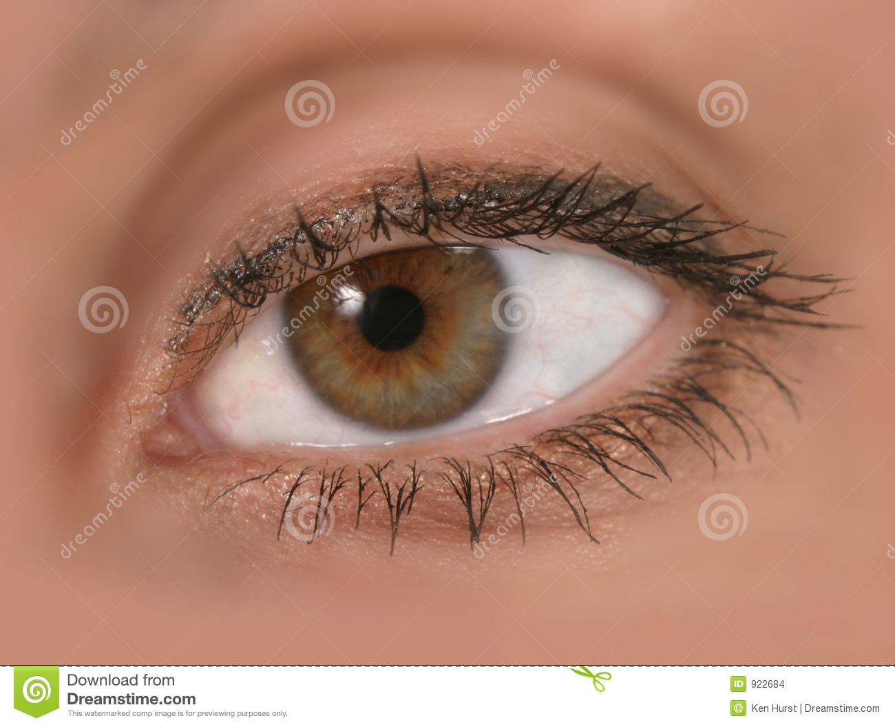 Close Up Of Woman's Eye In Focus Stock Images - Image: 922684