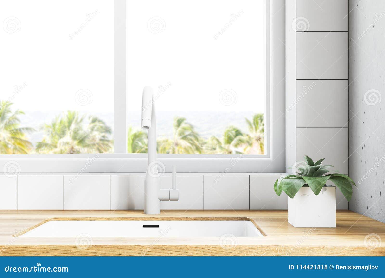 kitchen counter window horizontal white kitchen sink near window with tropic view kitchen sink near window with tropic view stock illustration