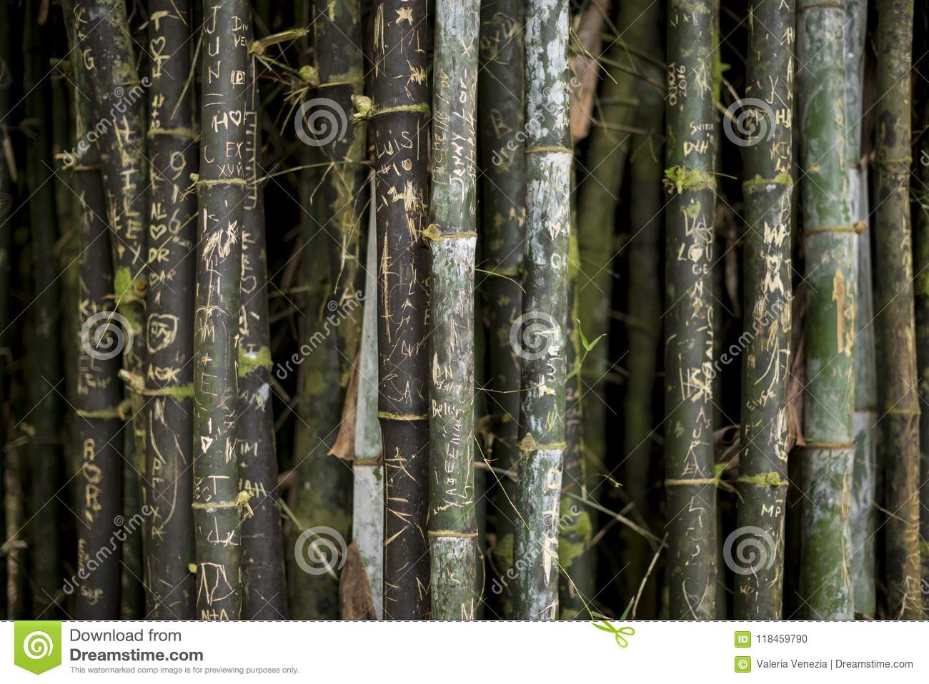 A close up of written bamboo rods