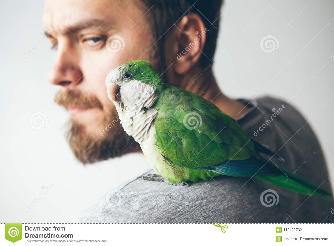 Close Up Of Young Beard Man With His Pet Quaker Parrot On Shoulder At Home Stock Photo Image Of Hand Blackhooded 112423732