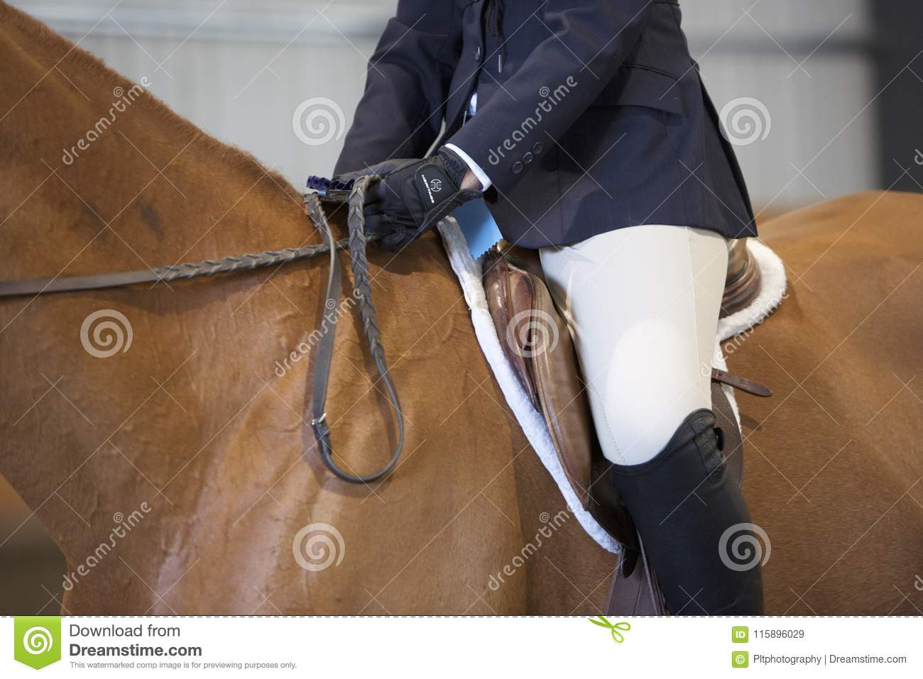 Blue Ribbon in Hand stock image  Image of horsemanship - 115896029
