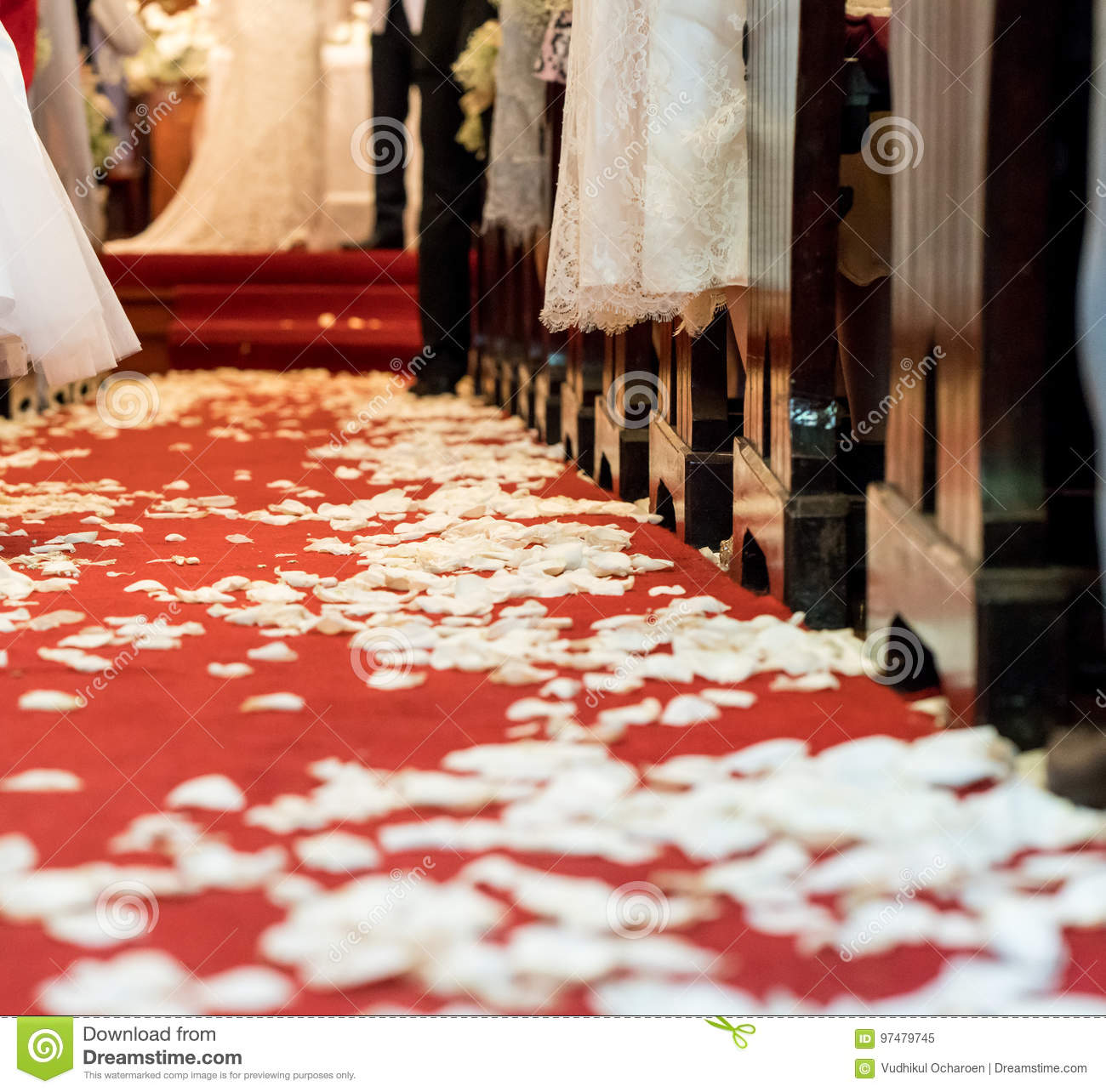 Closed up white flower petals on red carpet floor in church at C