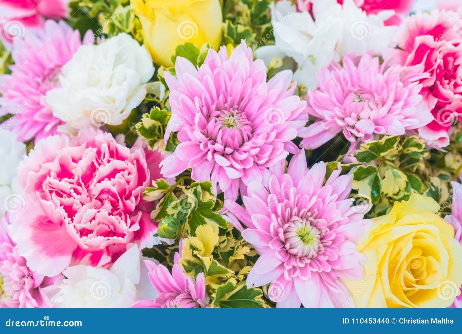 Closeup av den härliga blomman för att gifta sig