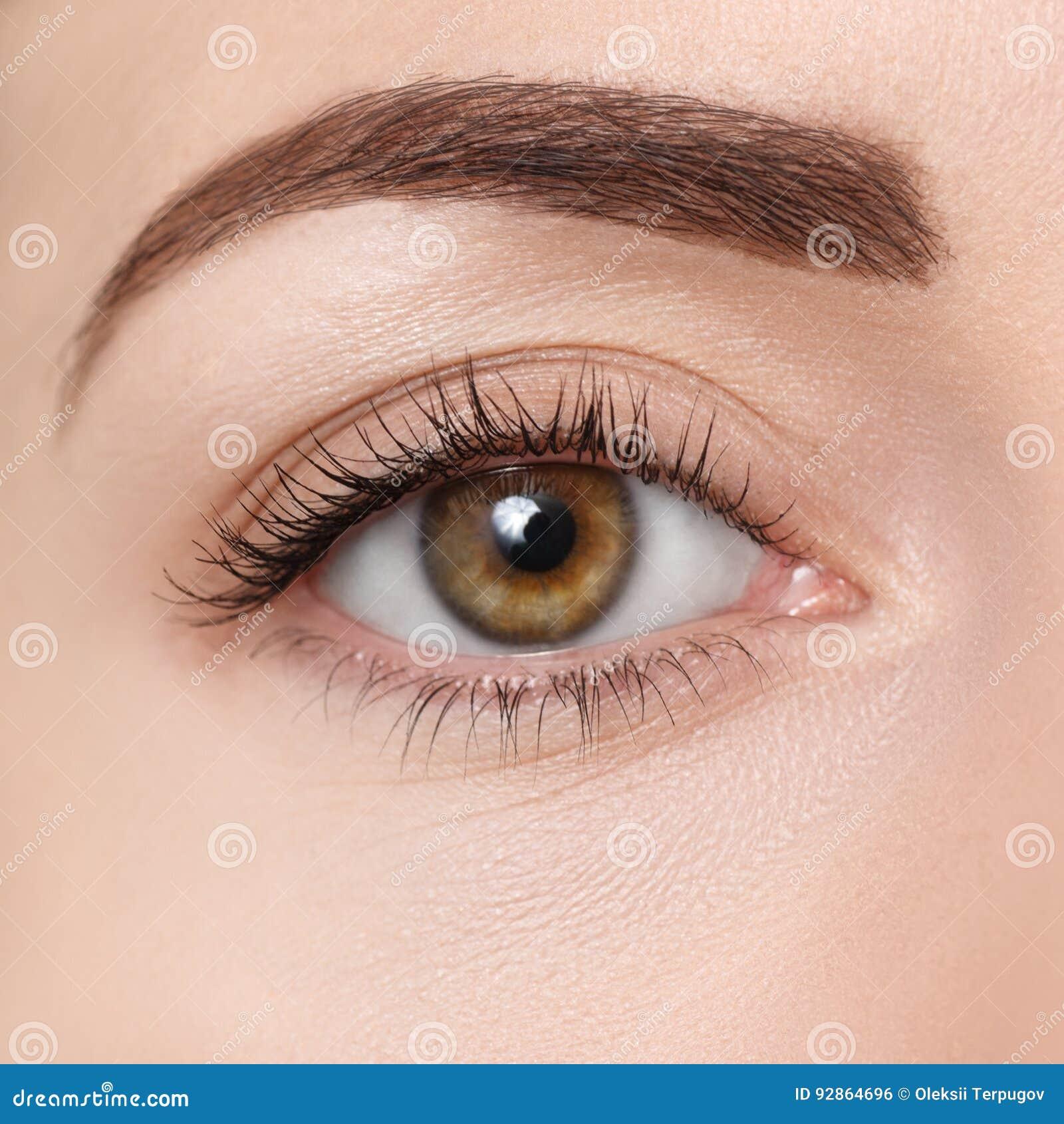 Closeup av det bruna ögat