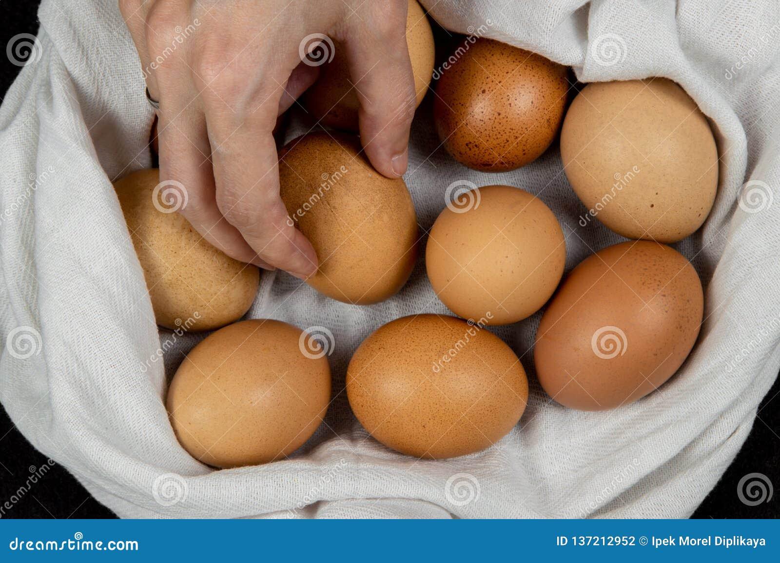 Closeup av en kvinnlig hand som väljer det nya ägget från en vit torkduk på en tabletop