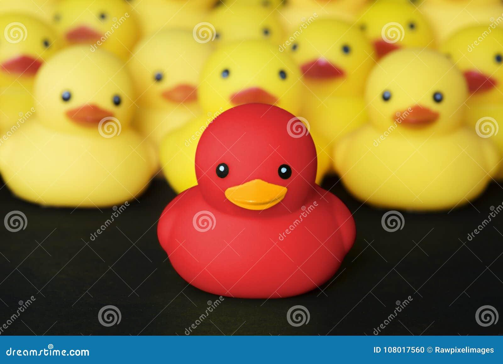 Closeup av rubber duckies med ledarskap