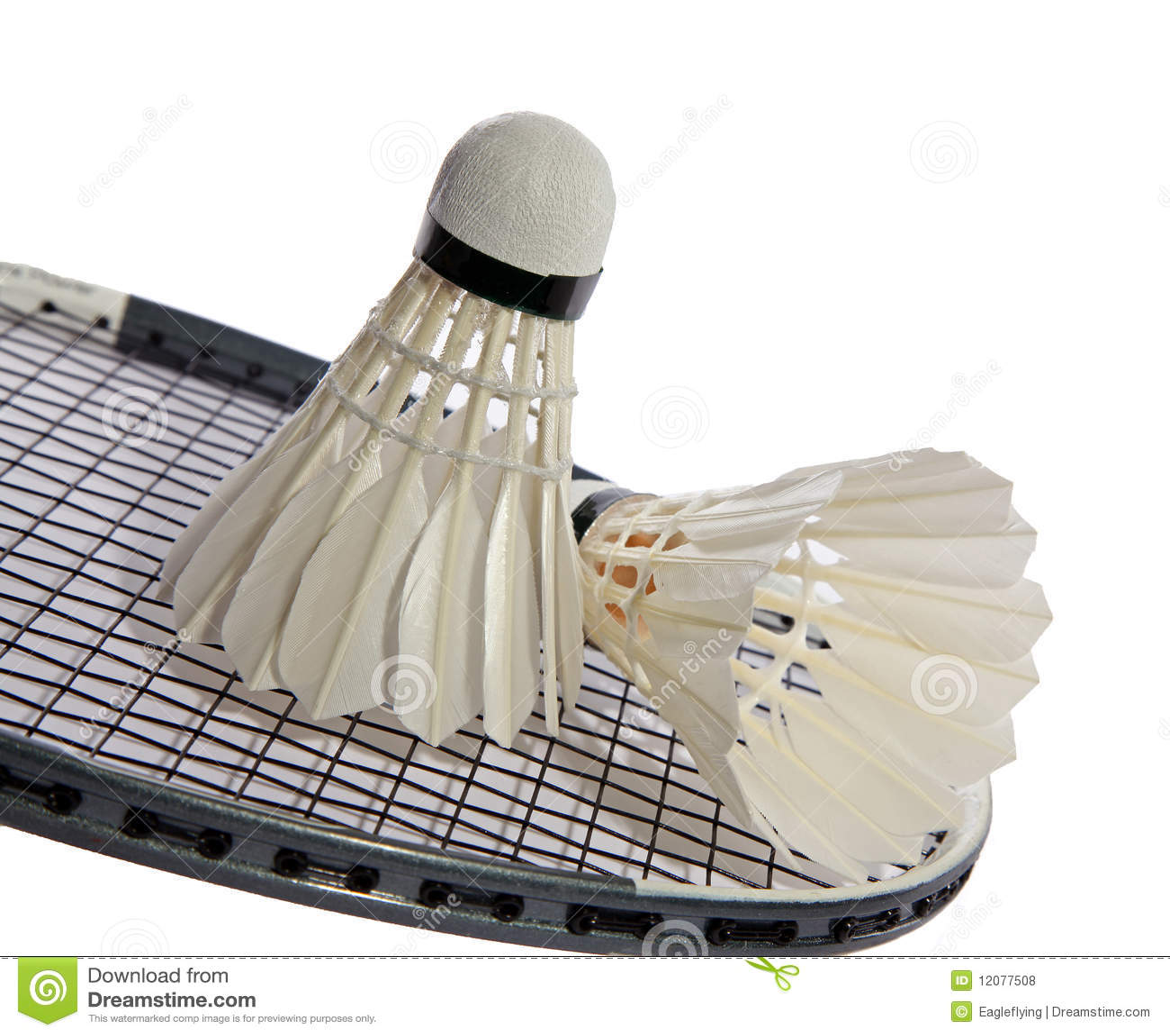Closeup of badminton racket and shuttlecock