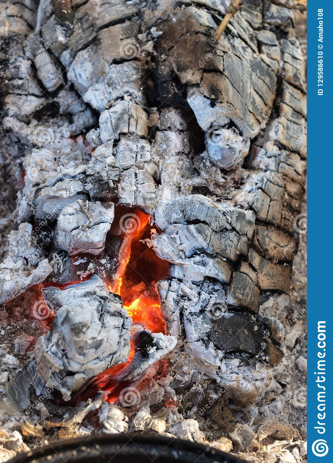 Closeup Of Burning Firewood With Charcoal And Hot Ashes