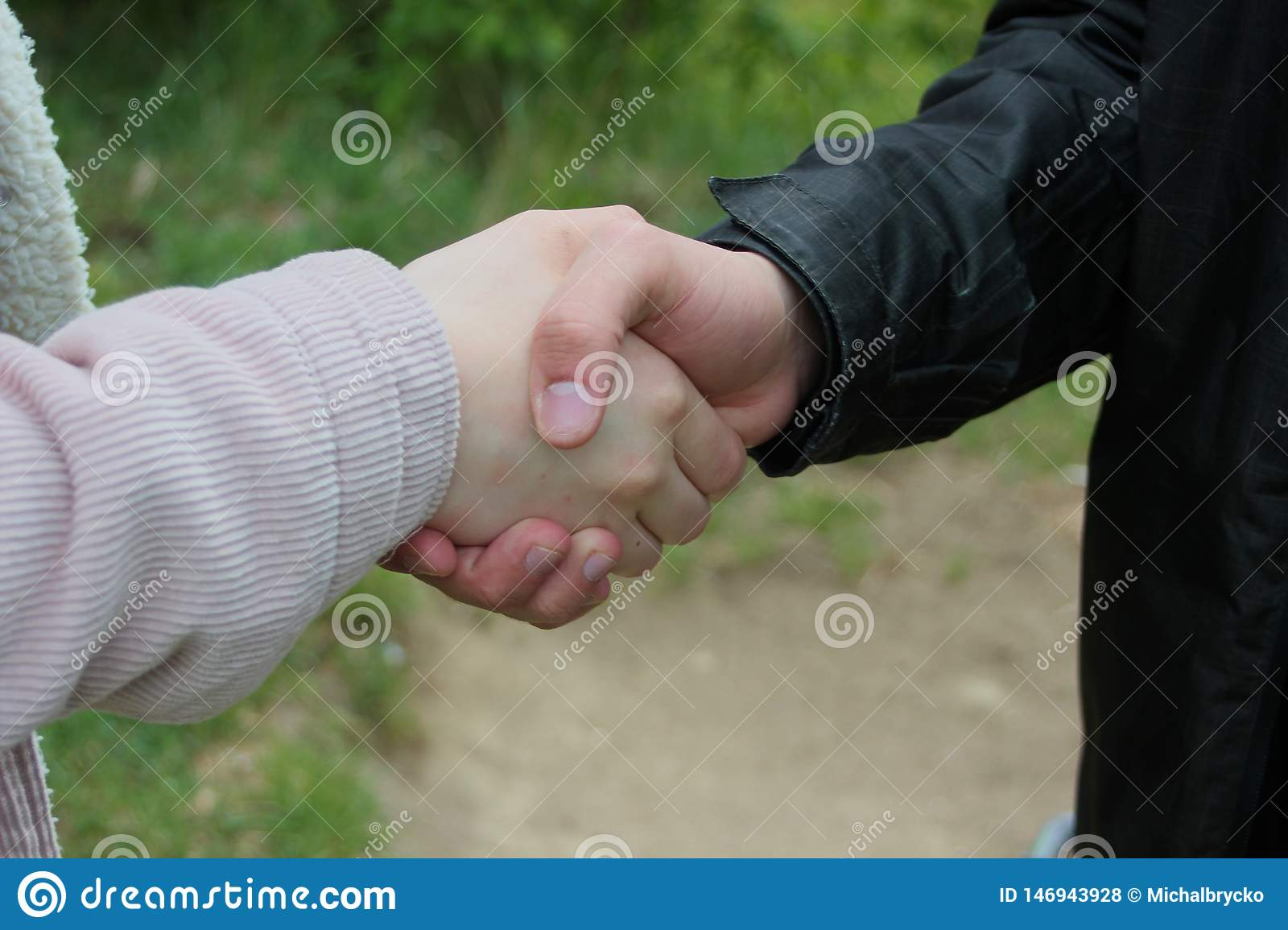 Closeup of a business handshake, in the forest