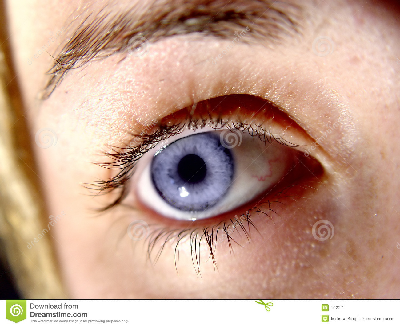 Closeup of Eye