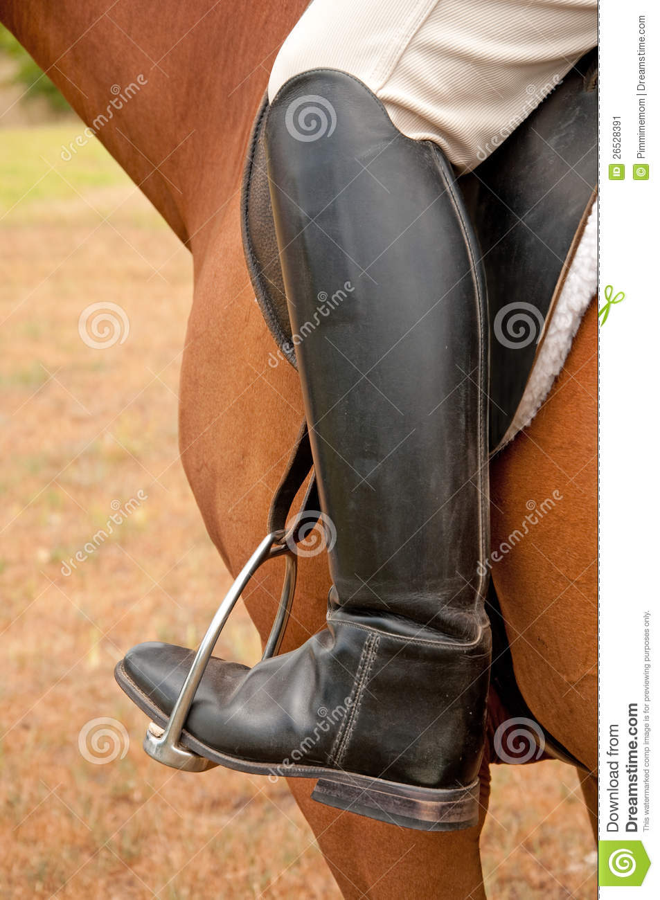 Closeup Of A Foot In A Stirrup Stock Image Image 26528391