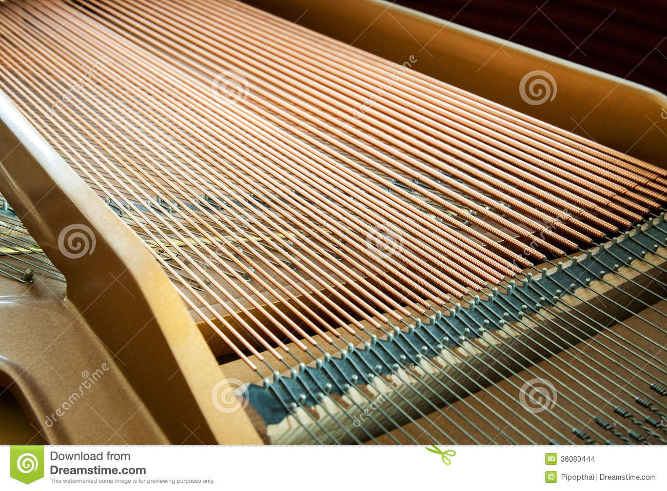 closeup of grand piano showing the strings pegs and sound board stock images image 36080444. Black Bedroom Furniture Sets. Home Design Ideas