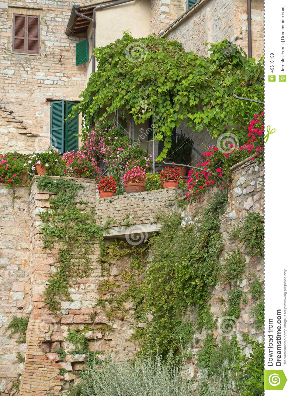 Closeup of the old stone house and plants stock photo for Classic house plants