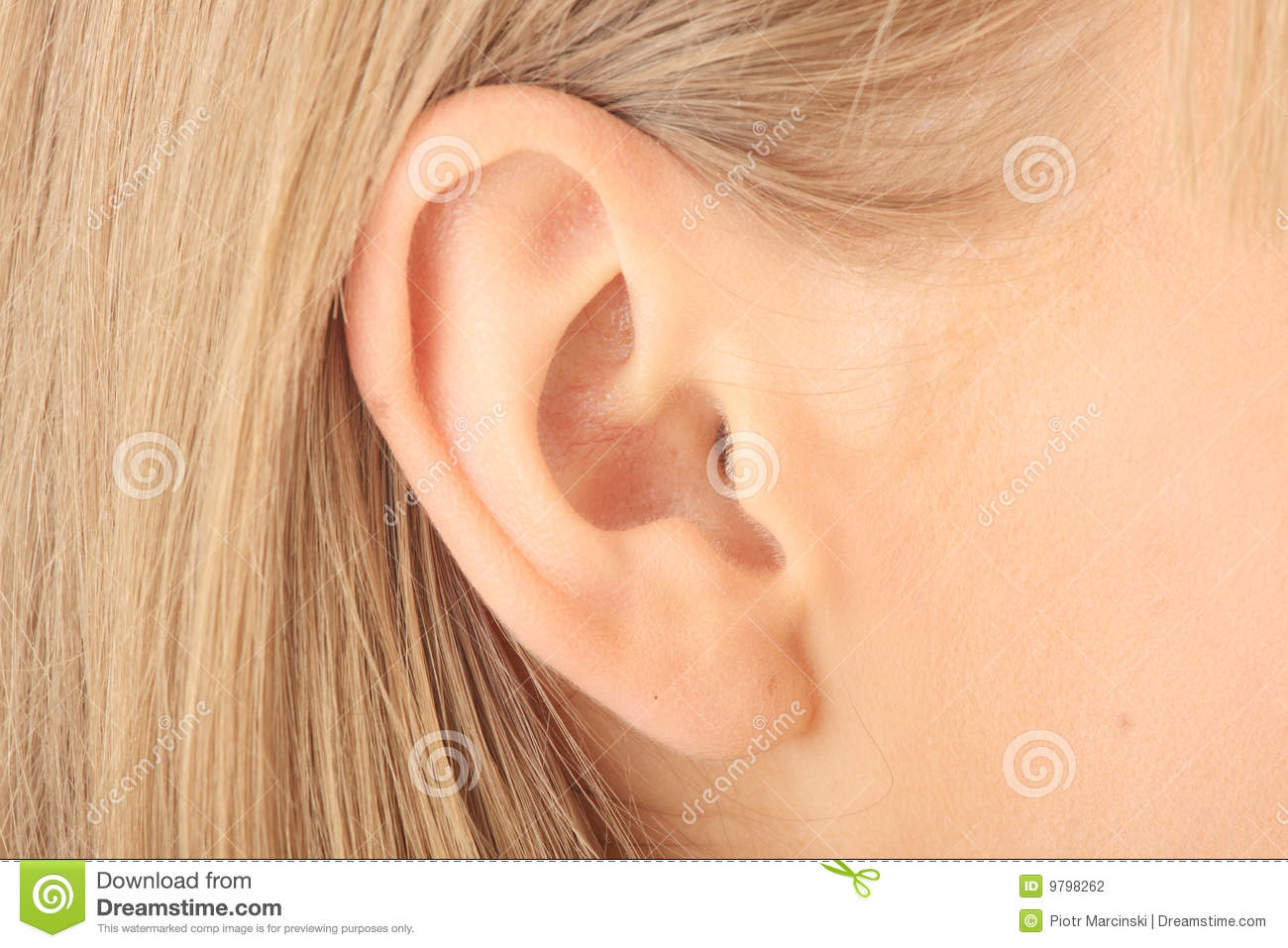Closeup picture of blond girl ear