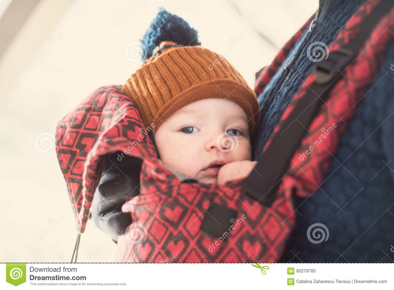 Closeup portrait of baby in a carrier