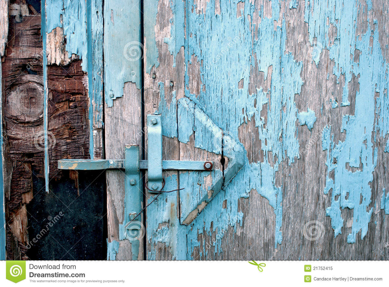 Closeup Of A Rustic Shed With Blue Peeling Paint Royalty